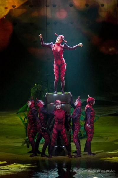 Cirque_du_Soleil_Ovo_2018_004