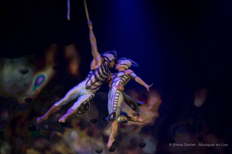 Cirque_du_Soleil_Ovo_2018_010