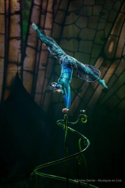 Cirque_du_Soleil_Ovo_2018_013