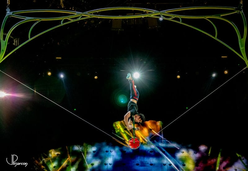 Coulisses_Cirque_du_Soleil_Ovo_2018_001