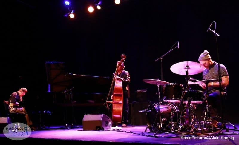 The-Dave-king-trio_002