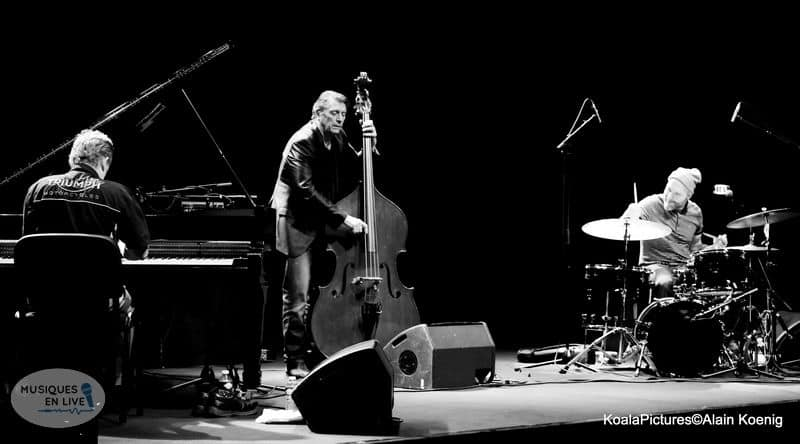 The-Dave-king-trio_005