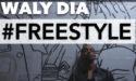 WALY DIA – LES FOUS RIRES DE BORDEAUX – VENDREDI 23 MARS 2018 – LA NOUVELLE COMEDIE GALLIEN