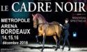 LE CADRE NOIR DE SAUMUR – VENDREDI 14 > DIMANCHE 16 DÉCEMBRE 2018 – ARKÉA ARENA – FLOIRAC