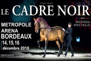LE CADRE NOIR DE SAUMUR - VENDREDI 14 > DIMANCHE 16 DÉCEMBRE 2018 - ARKÉA ARENA - FLOIRAC
