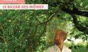 VOLER PREND 2L – MERCREDI 25 MARS 2020 – LA CARAVELLE – MARCHEPRIME
