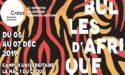 FESTIVAL BULLES D'AFRIQUE – 5 > 7 DECEMBRE 2019 – CAMPUS UNIVERSITAIRE – PESSAC